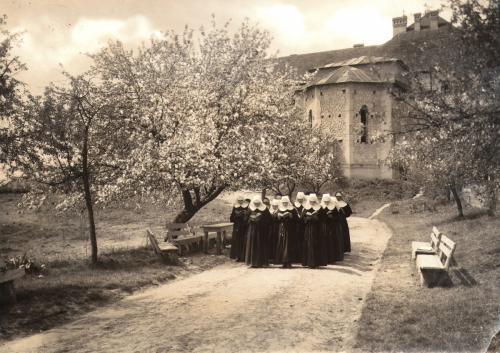 4) Grup de novice-Institutul Recunoștinței Blaj 1934
